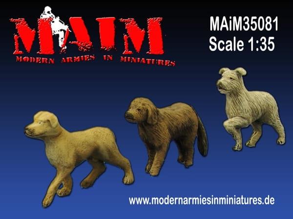 maim35081