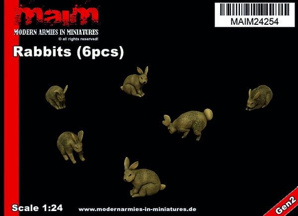 maim24254